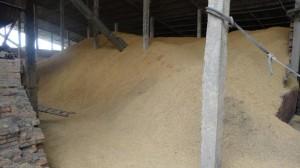 combustible-cosse-de-riz-300x168
